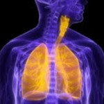 Lung Image